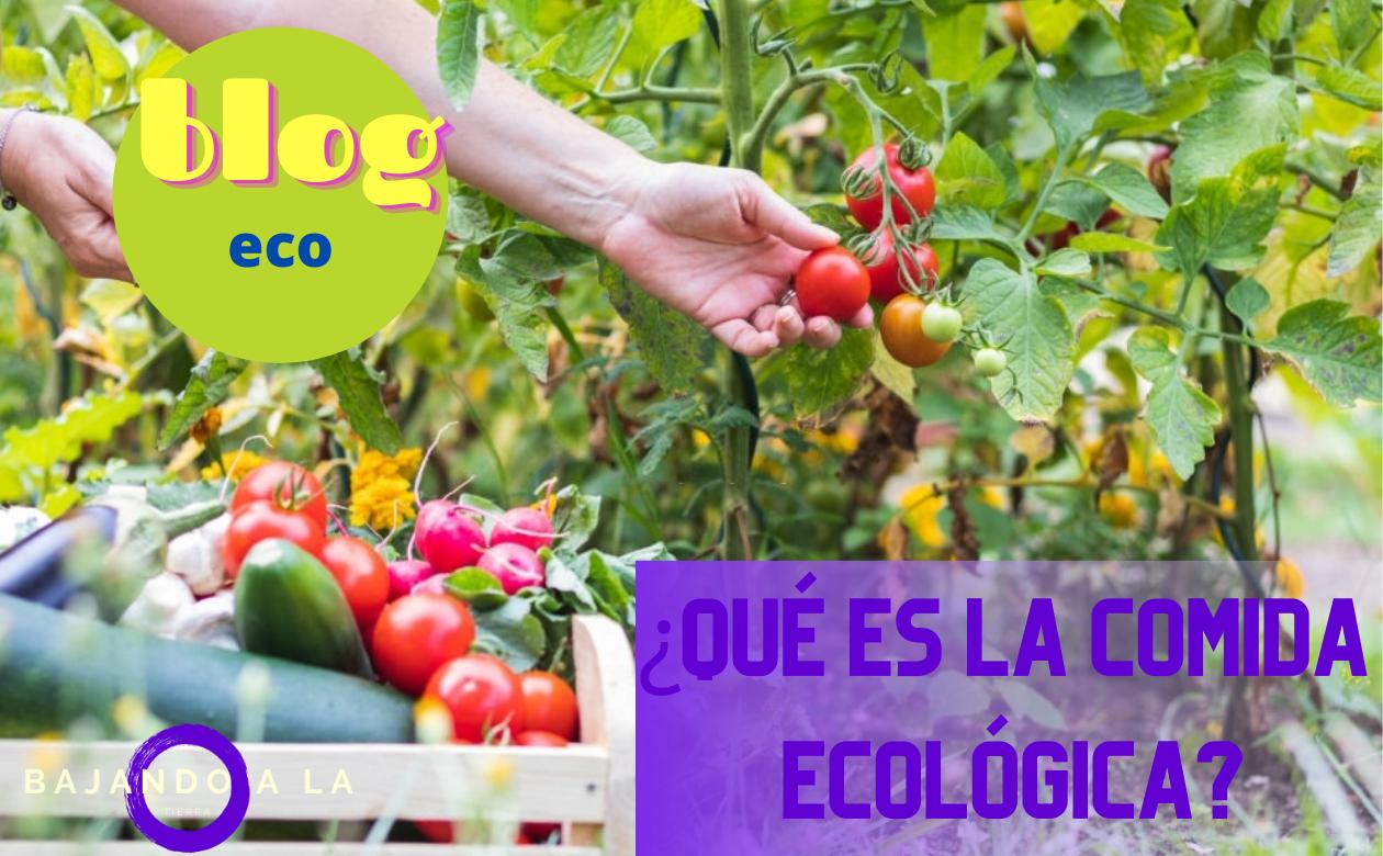 alimentación ecologica