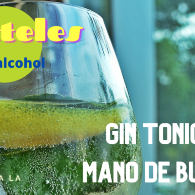 gin tonic gourmet