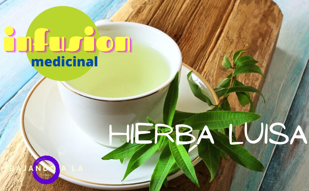 Infusión de HIERBA LUISA | Propiedades + RECETA
